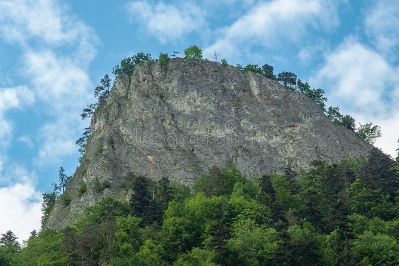 Sokolica peak Pieniny National Park in southern Poland. stock images