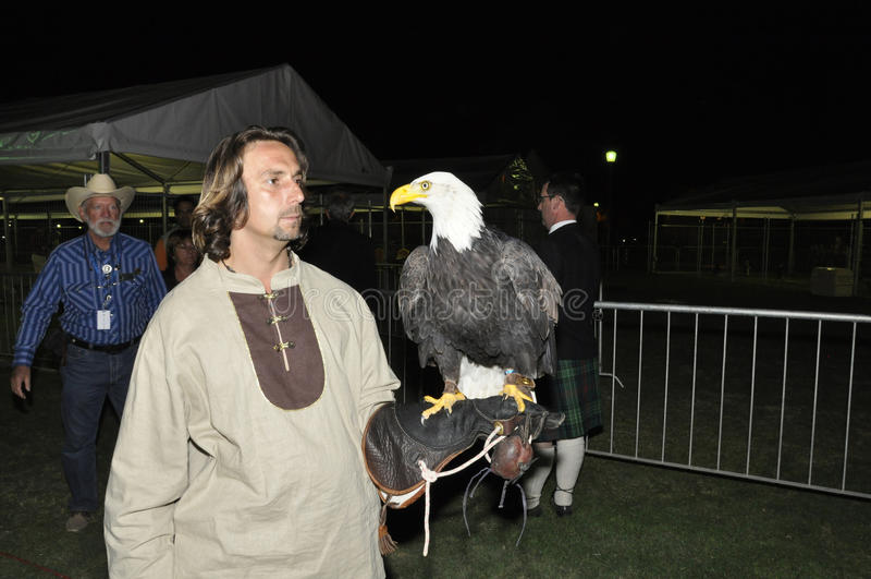 Sokolnik z Amerykańskim Łysym Eagle fotografia stock