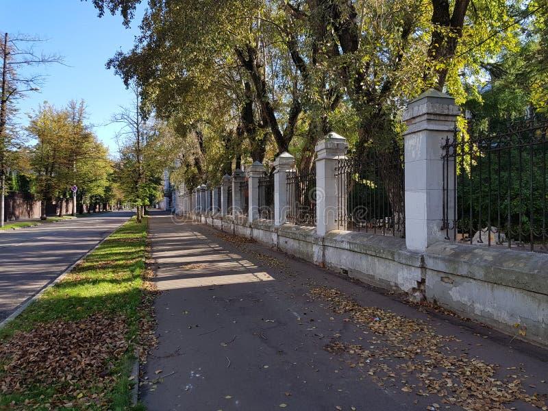 Sokolniki imagem de stock royalty free