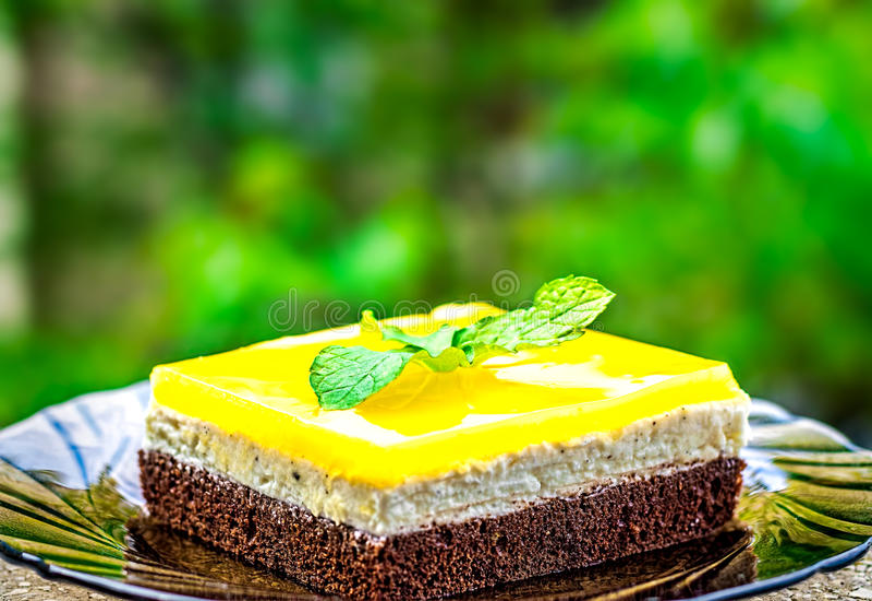 Soku Pomarańczowego Jello tort zdjęcie stock