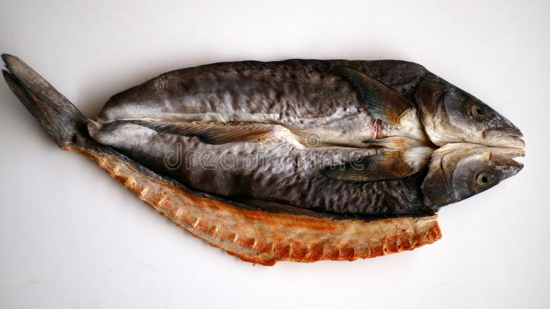 soląca wysuszona ryba obraz royalty free