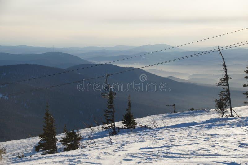Sol brilhante no inverno fotos de stock