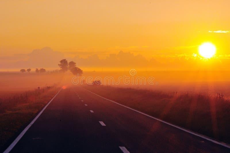 Sol da manhã imagens de stock