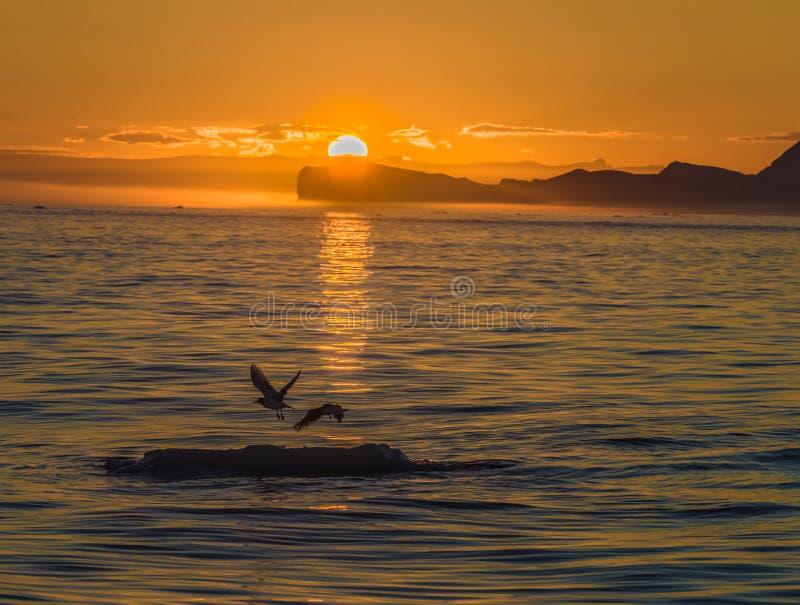 Sol da meia-noite sobre os iceberg na boca do Iceford, Ilulissat, Gronelândia fotografia de stock royalty free