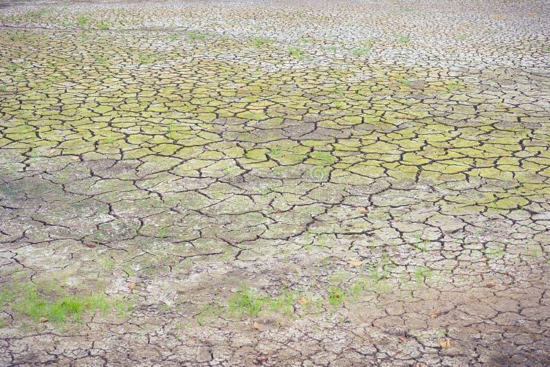 Sol de fente sur l'effet de réchauffement global de saison sèche photographie stock