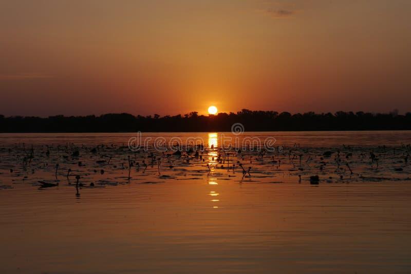 Sol de la puesta del sol del verano imagen de archivo libre de regalías