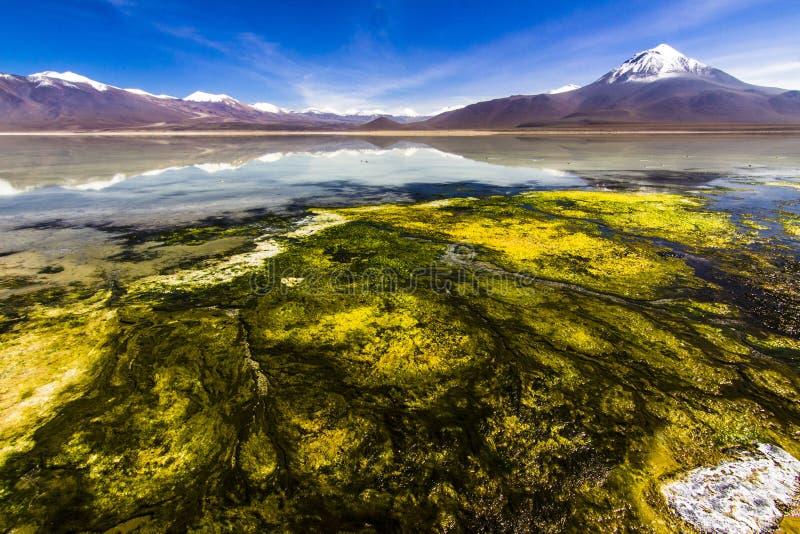 Sol de Mañana Geyser Visite d'Uyuni autour des lacs et des volcans des Andes boliviens un voyage étonnant photographie stock