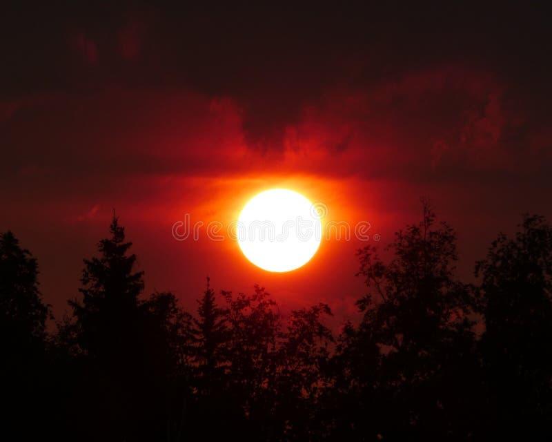 Sol de medianoche en la est temprana en Alaska fotos de archivo libres de regalías
