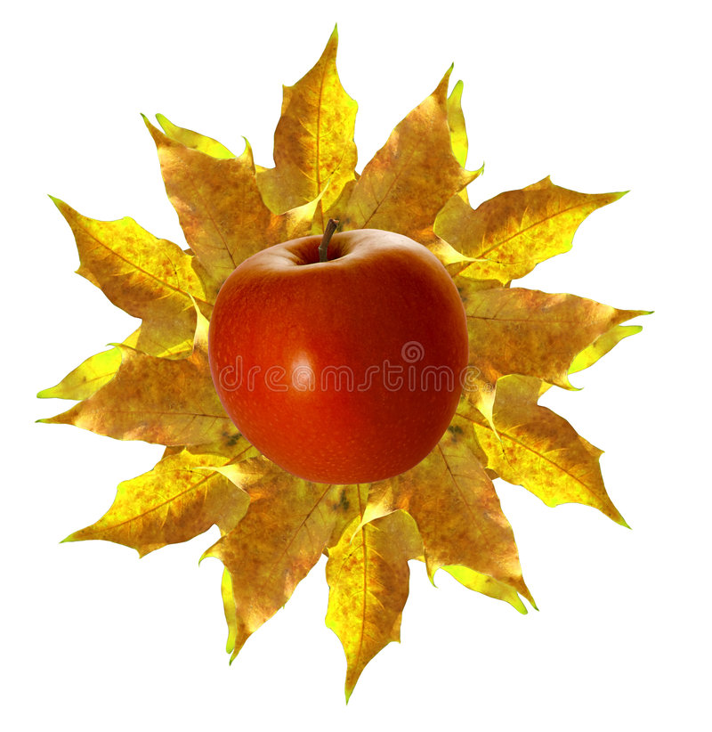 Sol de outubro foto de stock royalty free
