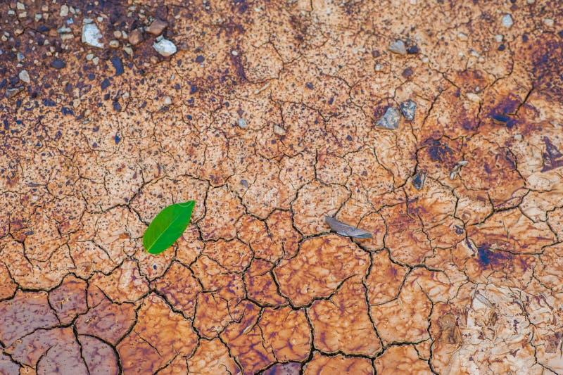 Sol de Sandy images stock