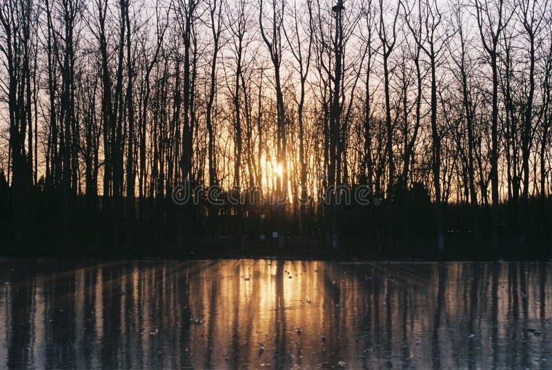 Sol del invierno y reflexión del hielo foto de archivo