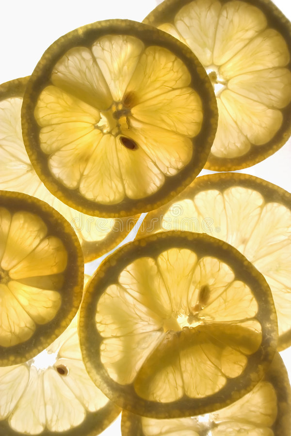 Sol del limón imagen de archivo libre de regalías