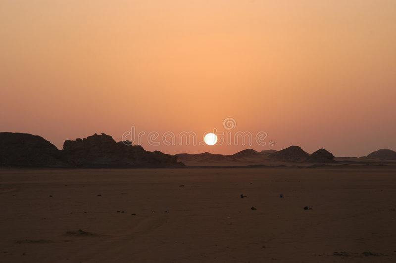 Sol do deserto fotografia de stock royalty free