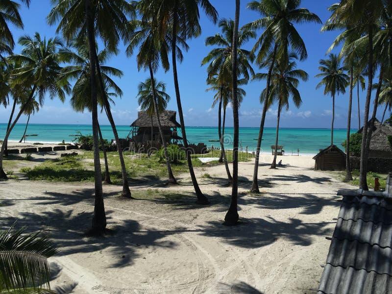 Sol do meio-dia que olha para baixo para a praia de Jambiani fotos de stock royalty free