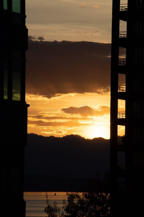 Sol dourado no som Puget fotos de stock