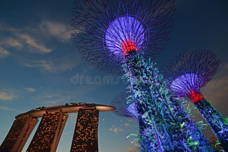 Sol- drev (källor för alternativ energi) Supertree dunge- & gräsplansärdrag packade Marina Bay Sands Hotel under solnedgång royaltyfria foton