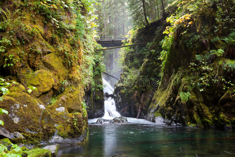Download Sol Duc stock photo. Image of range, olympic, stone, stream - 23177424