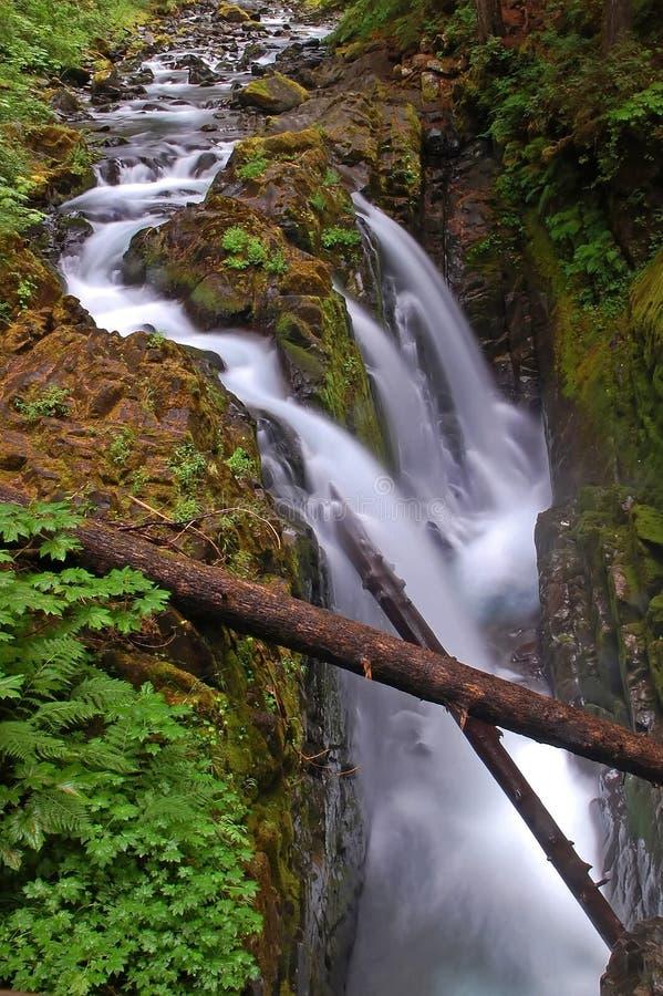 Sol Duc Falls stock photos