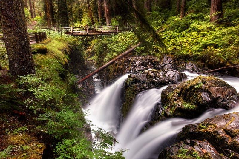 Sol Duc Falls en parc national olympique photos libres de droits