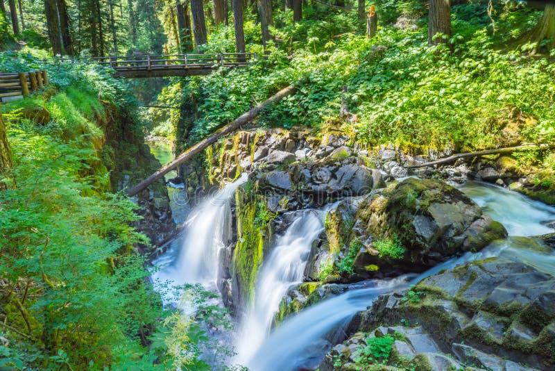 Sol Duc Falls, Washington photographie stock libre de droits