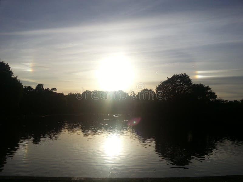 Sol- effekt av solhundkapplöpning royaltyfri foto