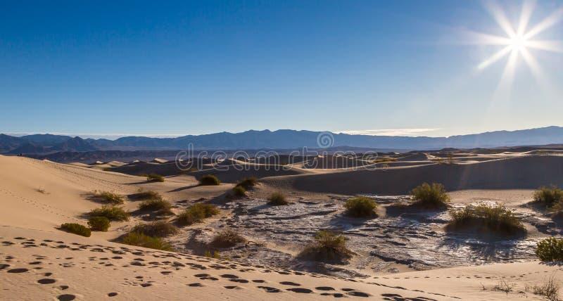 Sol empolando sobre as dunas de areia lisas do Mesquite imagens de stock royalty free