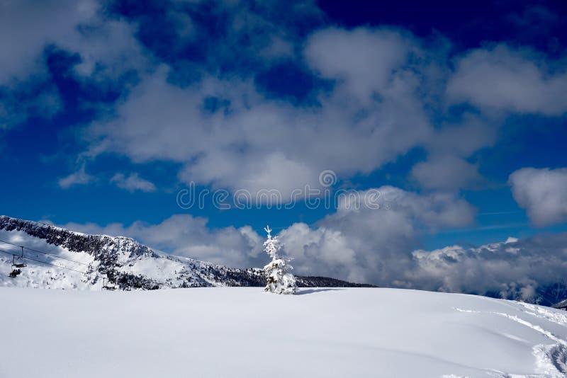 Sol för snöberglandskap på vintern royaltyfri bild