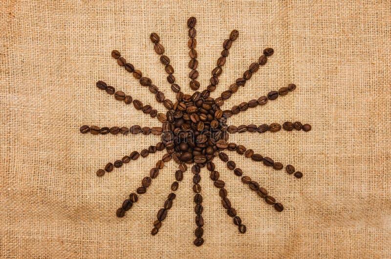Sol från kaffe royaltyfria foton