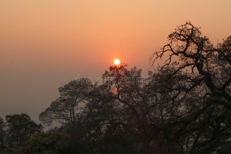 Sol i den rökiga himlen royaltyfria bilder