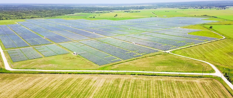 Sol- lantgårdantenn i Austin, Texas, USA royaltyfri bild