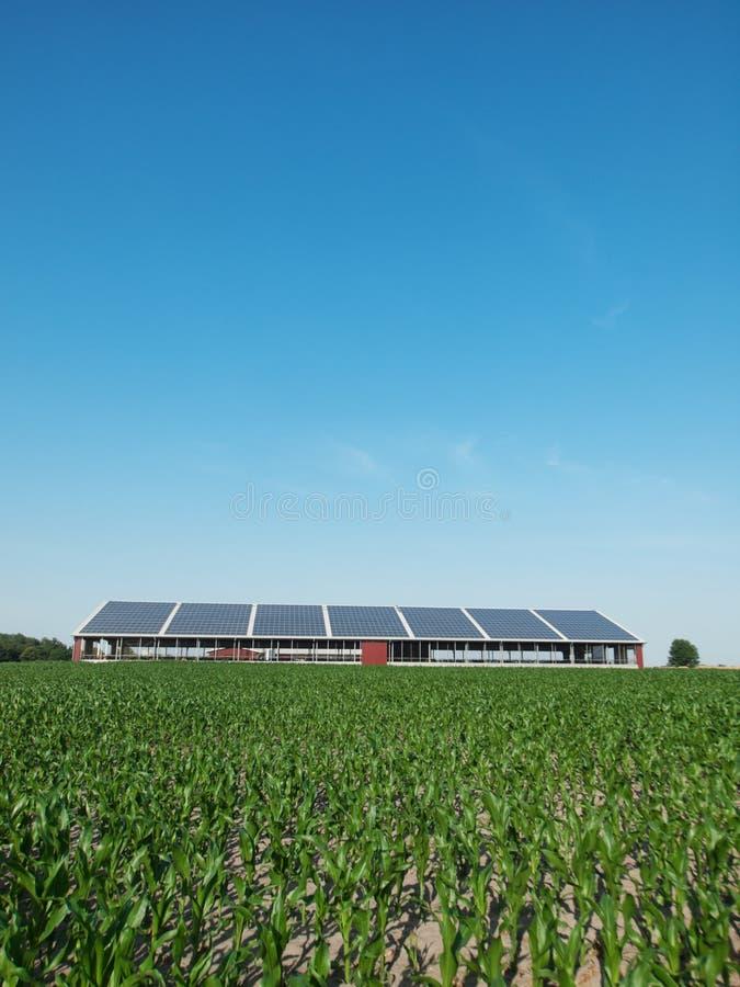 sol- lantgårdpanel fotografering för bildbyråer