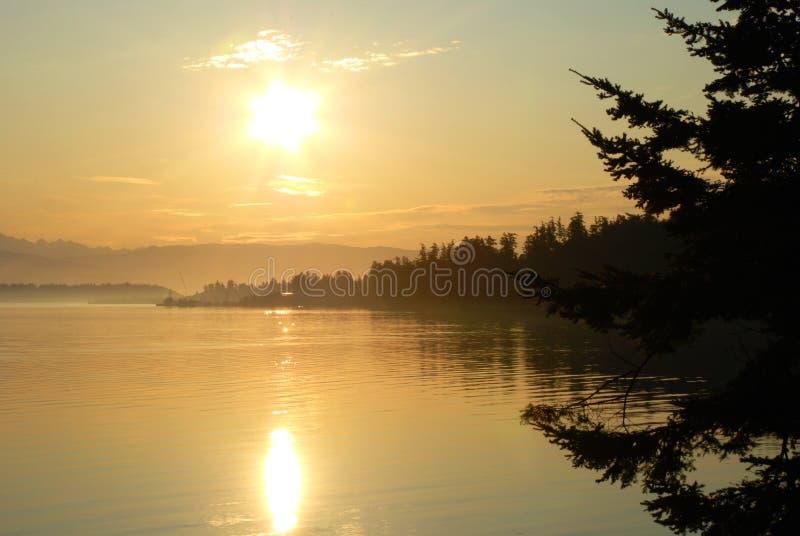 Sol no porto de Anacortes, em Washington imagens de stock