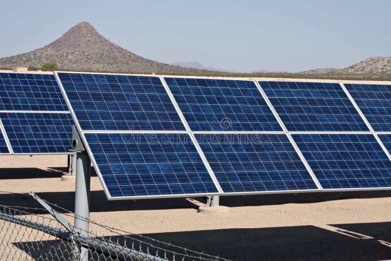 sol- panel för samlareenergilantgård royaltyfri foto