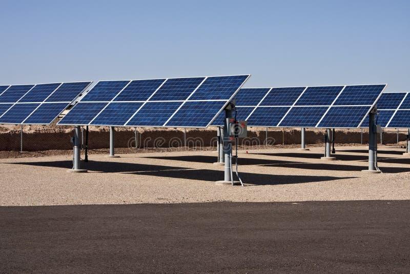 sol- panel för samlareenergilantgård royaltyfri bild