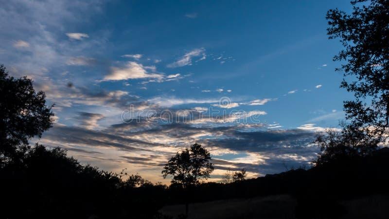 Sol poniente en la oscuridad con el cielo azul profundo y las nubes rayadas sobre un bosque de árboles silueteados fotos de archivo