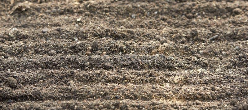 Sol préparé pour planter au printemps en gros plan Fond dans la tache floue photo libre de droits
