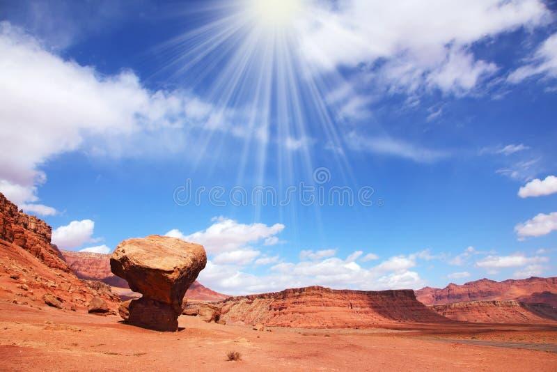 Sol quente do meio-dia fotografia de stock royalty free
