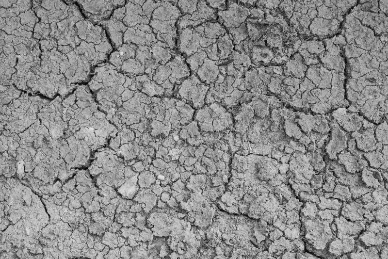Sol sec de fente la saison sèche images stock