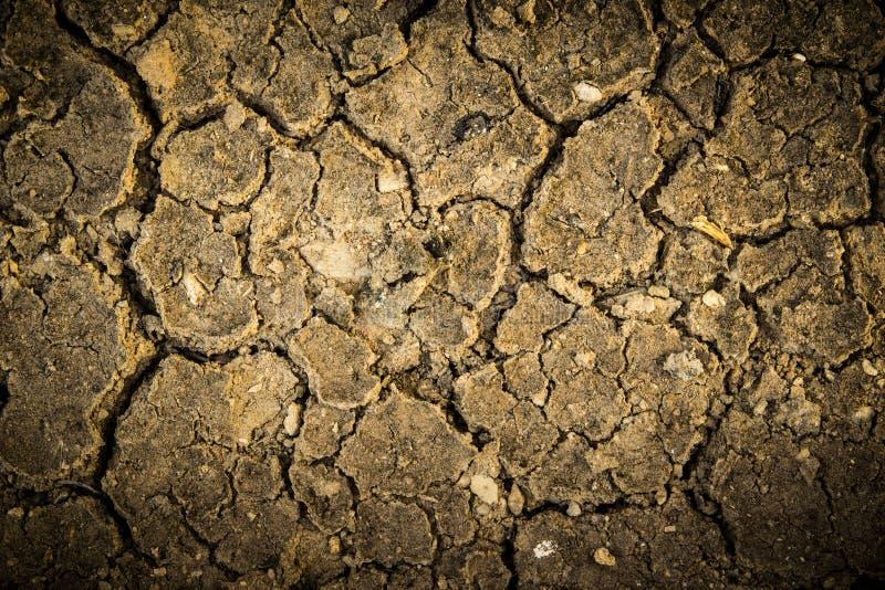 Sol sec de fente la saison sèche, effet worming global illustration libre de droits