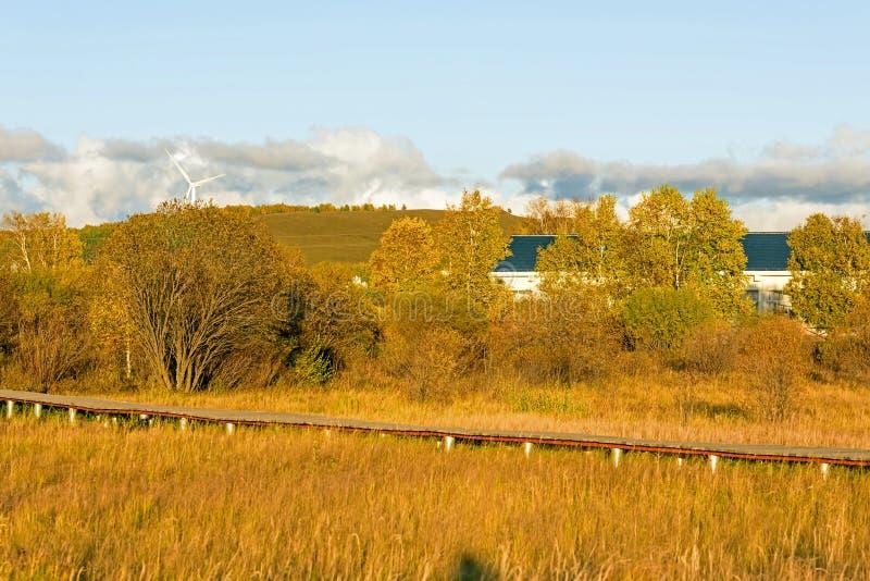 Sol sjö och plankabana i hösten fotografering för bildbyråer
