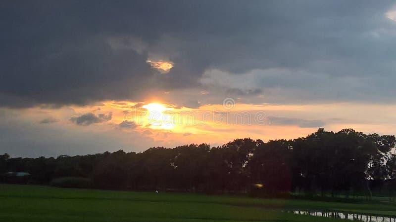 Sol som sjunker i eftermiddagen royaltyfri bild