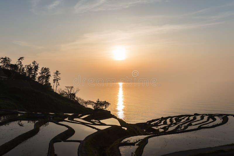 Sol som ställer in över risterrasser på Shiroyone Senmaida på kust för Japan ` s Noto Hanto arkivbild