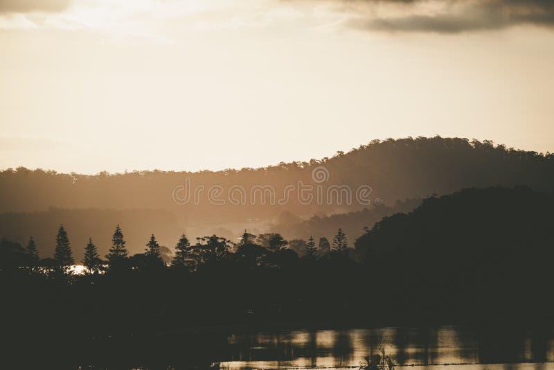 Sol som ställer in över trädkonturer som reflekterar i vatten med kopieringsutrymme arkivfoto