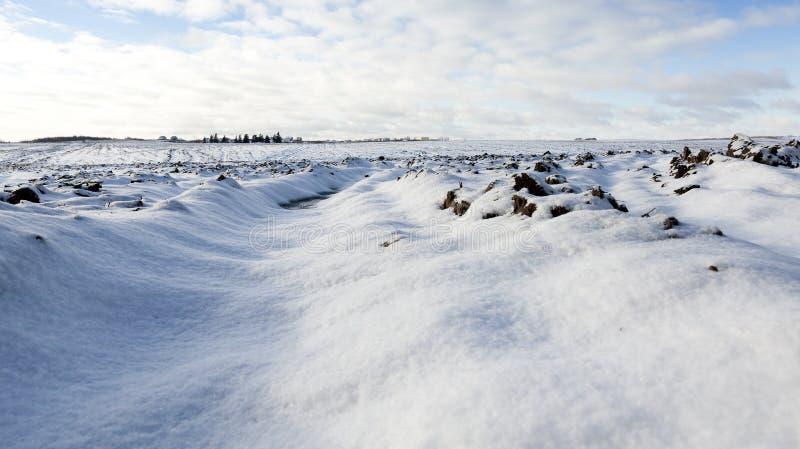 sol sous la neige image libre de droits