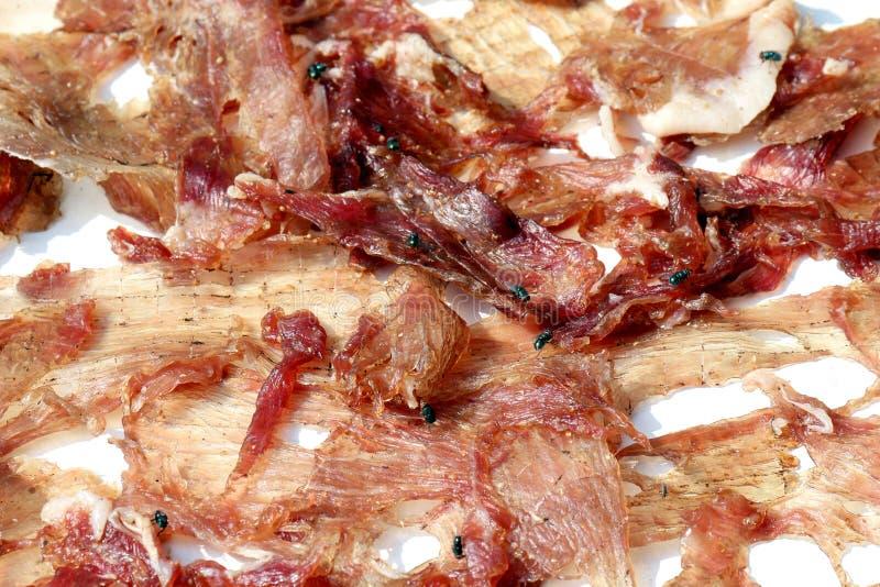 Sol-torkat griskött med flugor, det klipska krypet på arkgriskött torkade vid solen royaltyfri foto