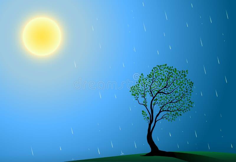 Sol, träd och regn, varmt regn för sommar, det bästa stället som växer träd, stora solregndroppar och grönt träd, vektor illustrationer