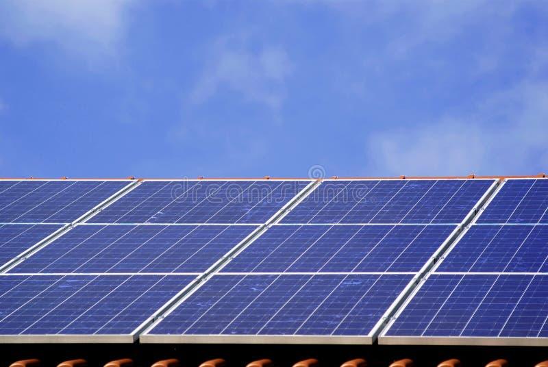 sol- växtström royaltyfri fotografi