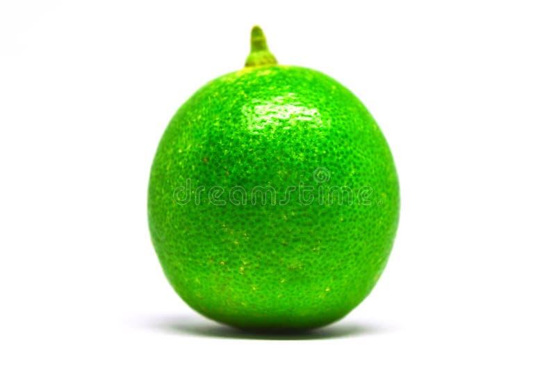 Sola cal verde imagen de archivo
