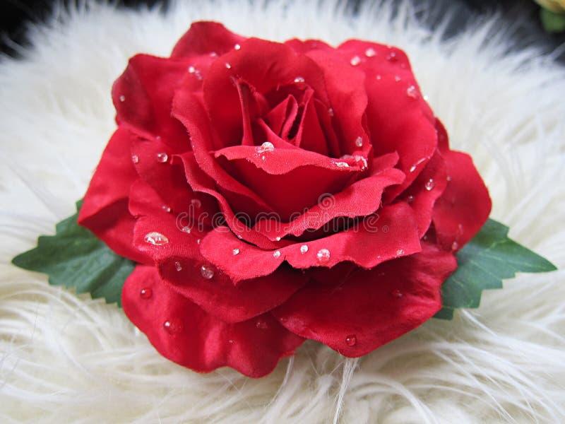 Pinza de pelo bastante roja hermosa de la flor de la rosa imagen de archivo