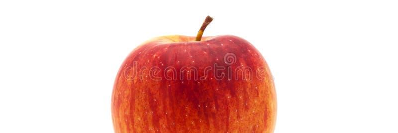 Sola manzana roja fresca Aislado en el fondo blanco Primer Cepillo de dientes fotos de archivo